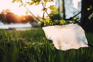 Go plastic bag free on 3 July and do your bit for the planet