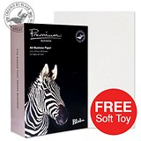 Image of Blake Premium A4 Paper / Diamond White / 120gsm / 2 Reams (2 x 500 Sheets) / Offer Includes FREE Zebra Soft Toy