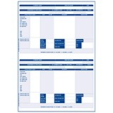 Image of Iris Compatible Payslip / 2 Per A4 Sheet / 1000 Payslips