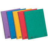 Image of Europa Notebook Twinwire Sidebound Ruled 90gsm 120pp Micro-perforated A4 Assorted Ref 4860Z [Pack 10]