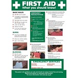 Stewart Superior First Aid Laminated Guidance Poster W420xH595mm