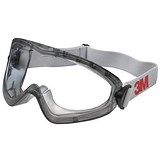 3M 2890 Safety Goggles