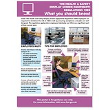 Image of Stewart Superior Display Screen Equipment Laminated Guidance Poster W420xH595mm Ref HS110