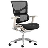 Image of Ergo-Dynamic Posture Chair / Grey Frame / Mesh / Black / Built