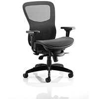Adroit Stealth Shadow Ergo Posture Chair, All Mesh, Black