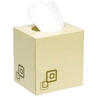 Maxima Facial Tissues Cube, 2-Ply, White, 70 Tissues per Cube, Pack of 24