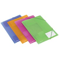 Rexel 4-Fold Ice Files, A4, Assorted, Pack of 4