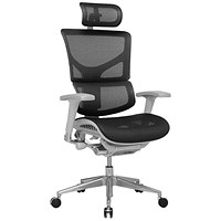 Ergo-Dynamic Posture Chair with Headrest / Grey Frame / Arms / Black / Built
