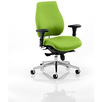 Chiro Plus Ergo Posture Chair - Myrrh Green