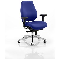 Chiro Plus Ergo Posture Chair - Stevia Blue