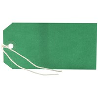Strung Tag 120x60mm Green (Pack of 1000) KF01624