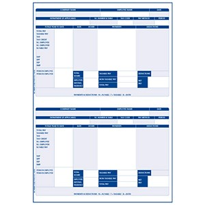 Image of Iris Compatible Payslip / 2 Per A4 Sheet / Ref FY95 / 1000 Payslips
