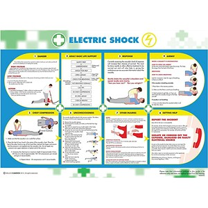 Image of Wallace Cameron Electric Shock Poster Laminated Wall-mountable W590xH420mm Ref 5405026
