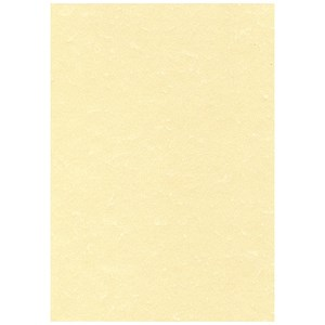 Image of A4 Letterhead Poster Quality Presentation Paper / Champagne / 165gsm / Pack of 50 Sheets