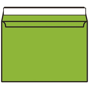 Image of Blake Plain Green C4 Envelopes / Peel & Seal / 120gsm / Pack of 250