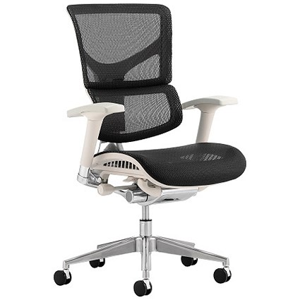 Ergo-Dynamic Posture Chair, Grey Frame, Mesh, Black